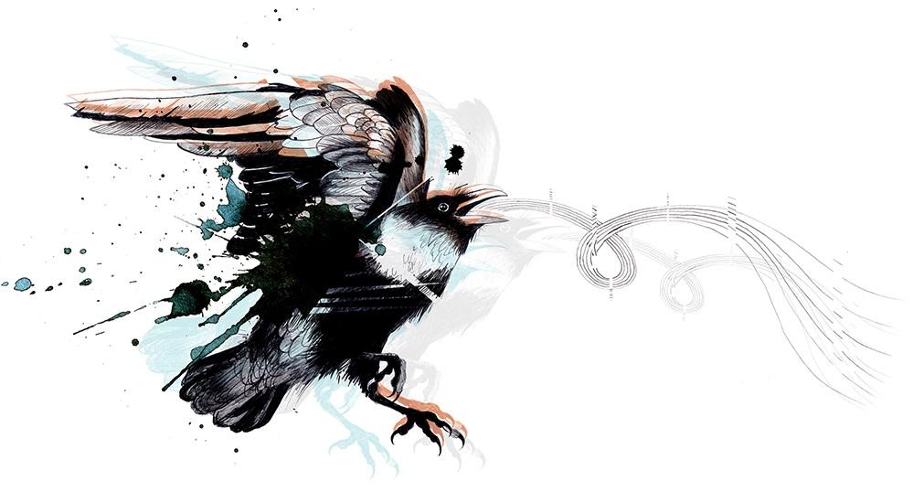 raven+comp3_sm.jpg