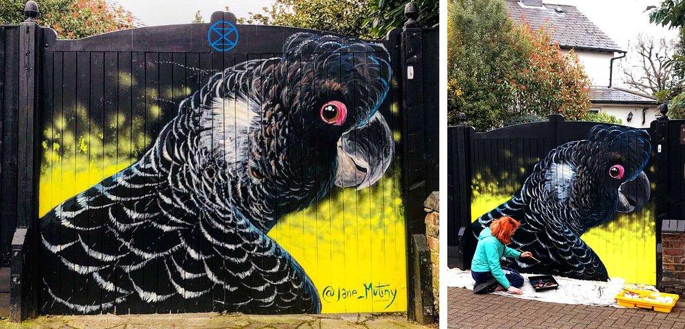 Carnaby's Black cockatoo in Penge, 2019. Organised by  London Calling Blog .