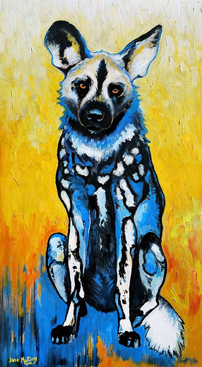 wild+dog+in+blue_2.jpg