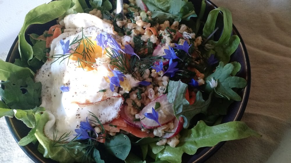Seasonal barley salad on a bed of greens