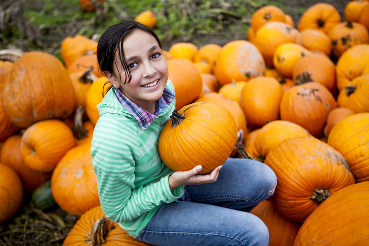 Kerr-Tarr-Pumpkins.jpg