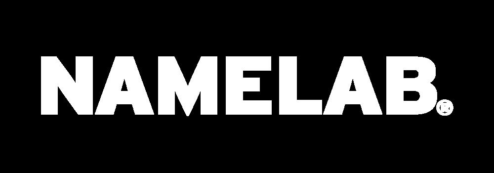 NAMELAB-logo.png