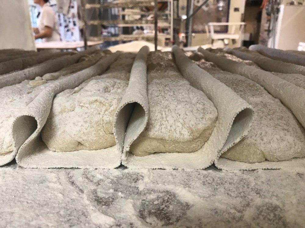 ciabatta dough ready to bake .JPG