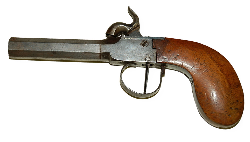 gun-1482610_1280.png