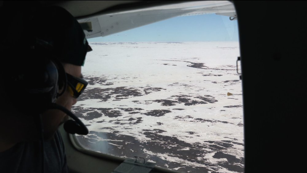An annual aerial survey of Barren-ground Caribou populations is conducted by plane near Cambridge Bay, Nunavut.