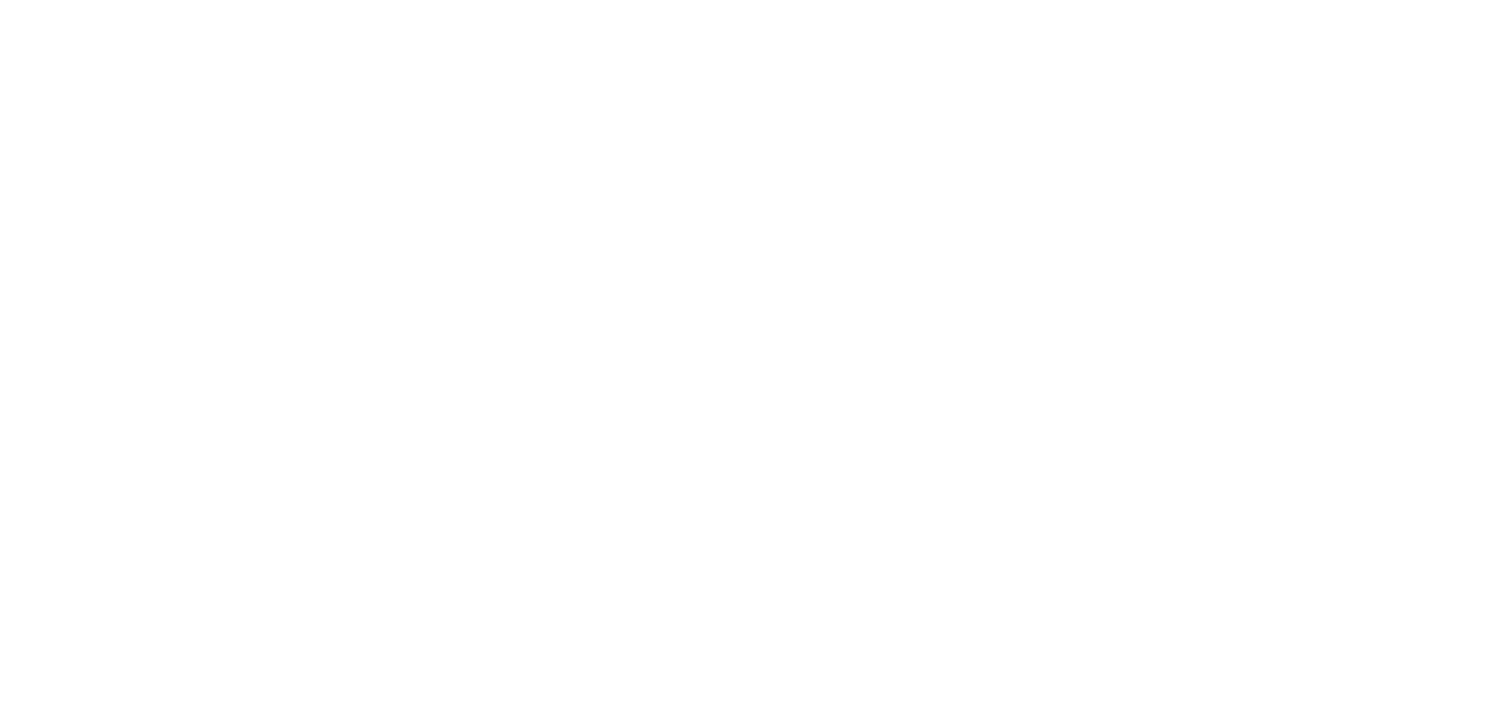 FLANS DIGITAL CONSULTING