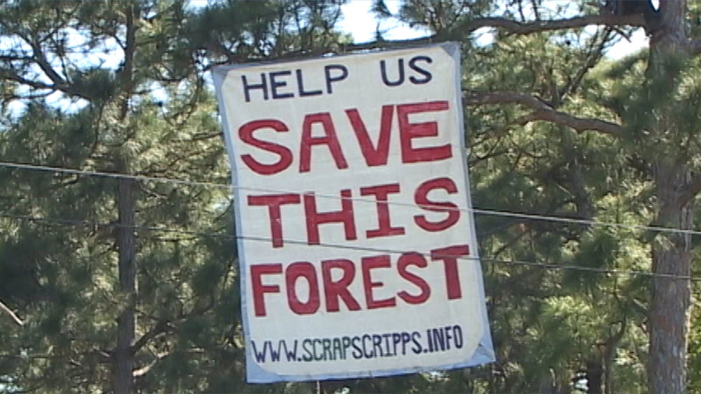 help us save this forest sign.jpg