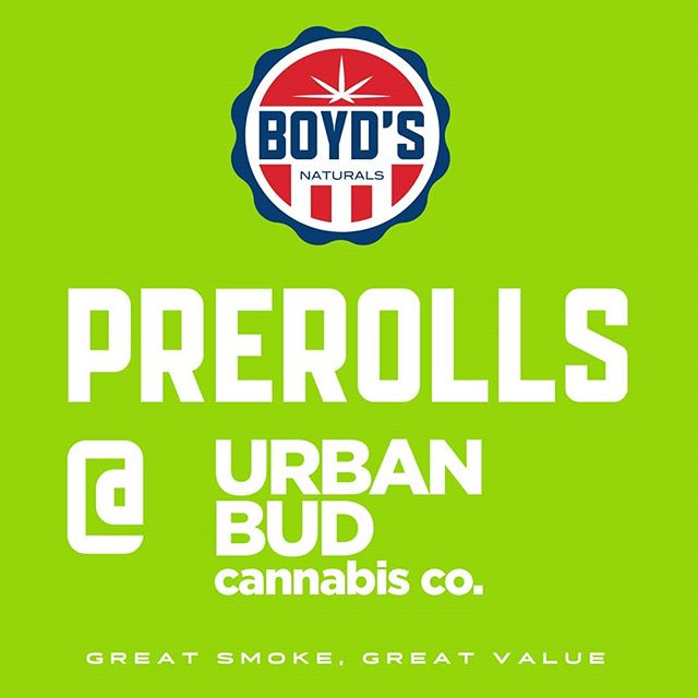 Get your BOYD'S Prerolls @urbanbud.tacoma⁣ ⁣ #rollboyds #harmonyfarms #washingtonweed #weedporn #i502 #legalweed #fairmarketcannabis #cannabiscommunity #hemp #cannabis #blunts #cbd #instacannabis #cannabis420 #weedsociety #potheadworld #cannabisheals #stayblazed #dailycannabis #prerolls #urbanbud.tacoma⁣ ⁣ ⁣WARNING: This product has intoxicating effects and may be habit forming. Smoking is hazardous to your health. There may be health risks associated with consumption of this product. Should not be used by women who are pregnant or breast feeding. Keep out of reach of children. Marijuana can impair concentration, coordination, and judgement. It is illegal to operate a vehicle or machinery while under the influence of marijuana. This product is unlawful outside Washington State.⁣