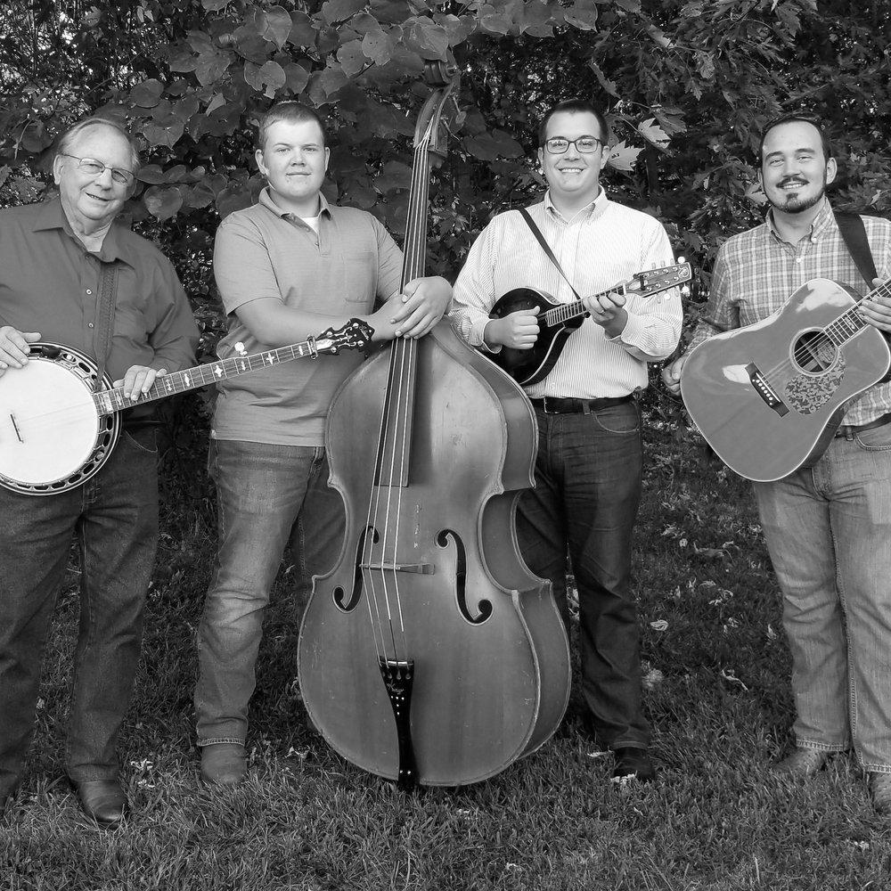 Clearview Bluegrass -
