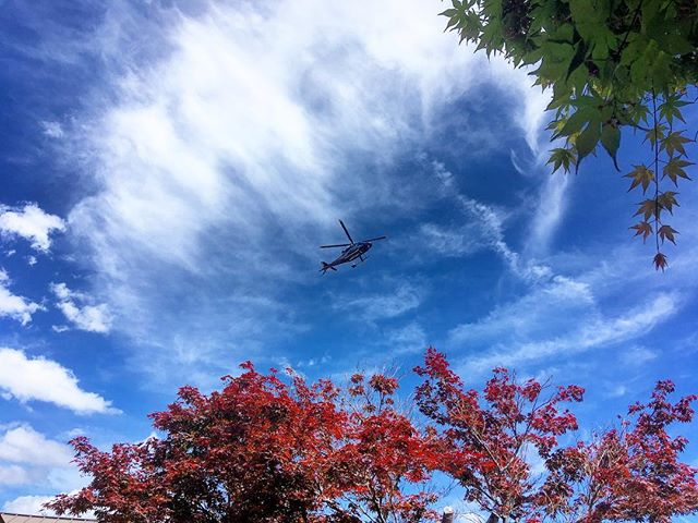 Our partners @lifeflightnetwork flying through a beautiful scene from our courtyard.