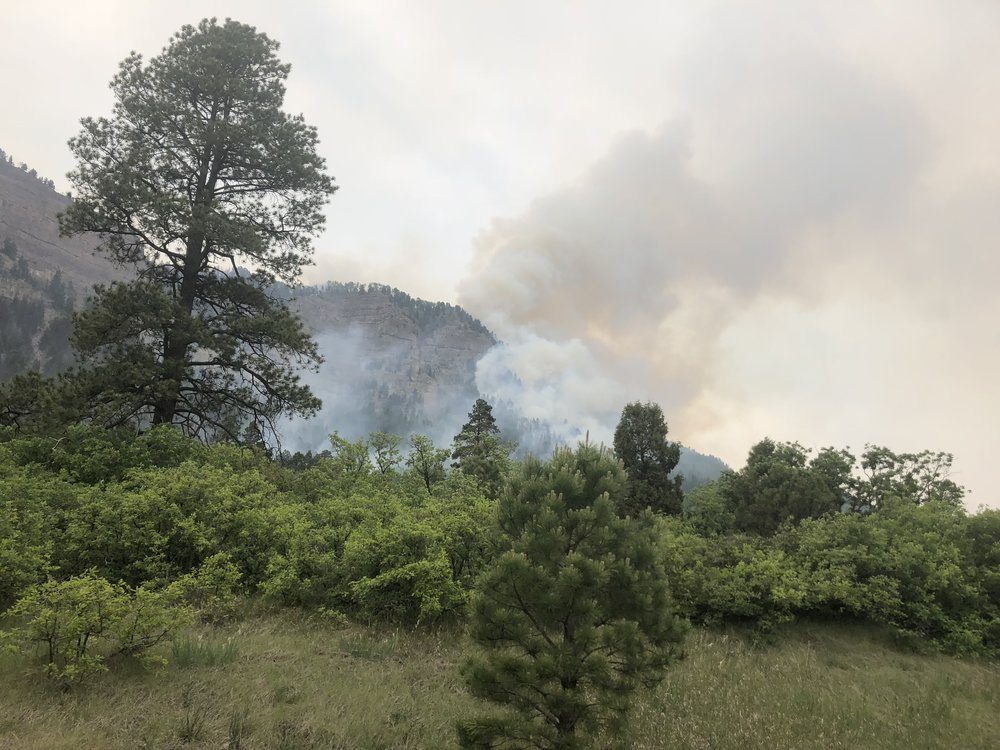 416 Fire, Durango, CO
