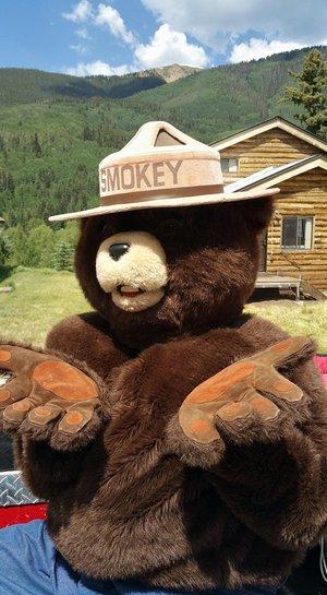 Smokey+Bear.jpg