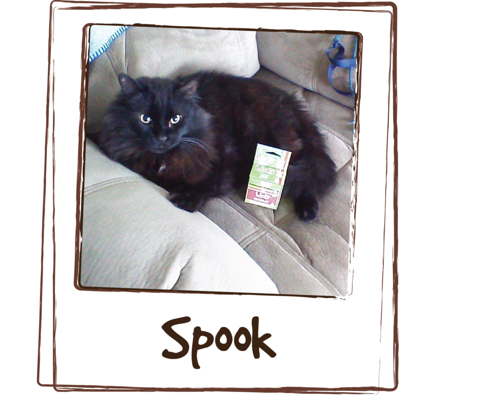 """Giving Spook Licks Zen has calmed him down so he isn't aggressive towards our 8 year old female cat. It mellows him right out so he doesn't have the urge to jump at her when she walks by."""