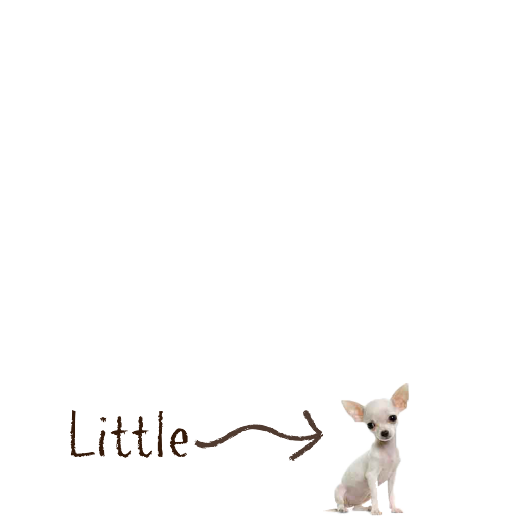 Dog_Little.png
