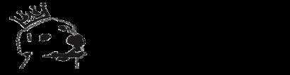 logo1_caf5f379-ac77-40a5-b516-98c899b63a9a_410x.png