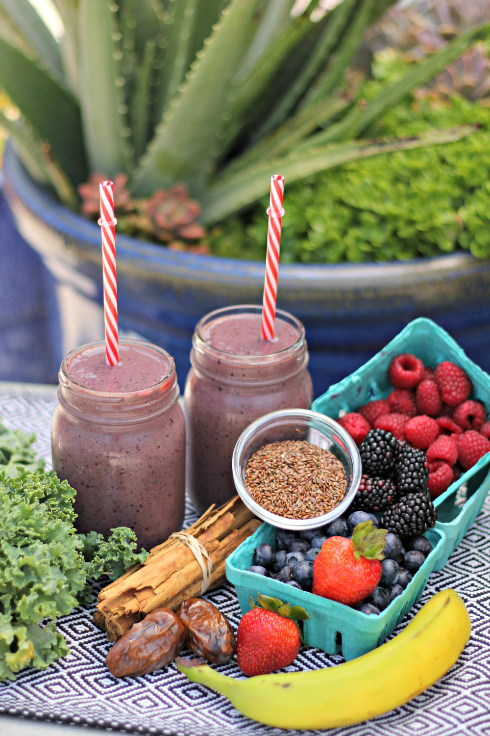 Dr  Funk's Antioxidant Smoothie — Raven Pink