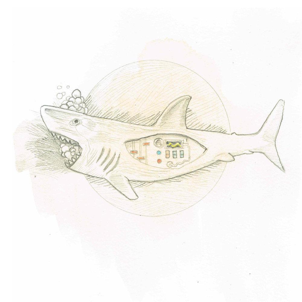 Dave shark_0001_02281710.jpg