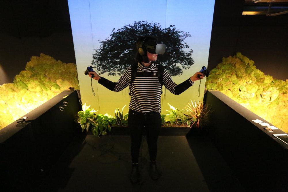 Tree  @ Sundance Film Festival