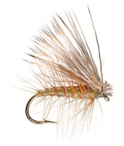 C)Adult Caddis  Elk Hair Caddis