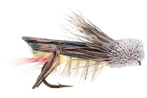 E)Grasshopper  Dave's Hopper