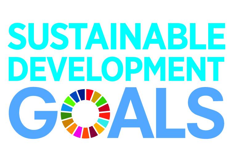 E_SDG_logo_No UN Emblem_square_cmyk.jpg