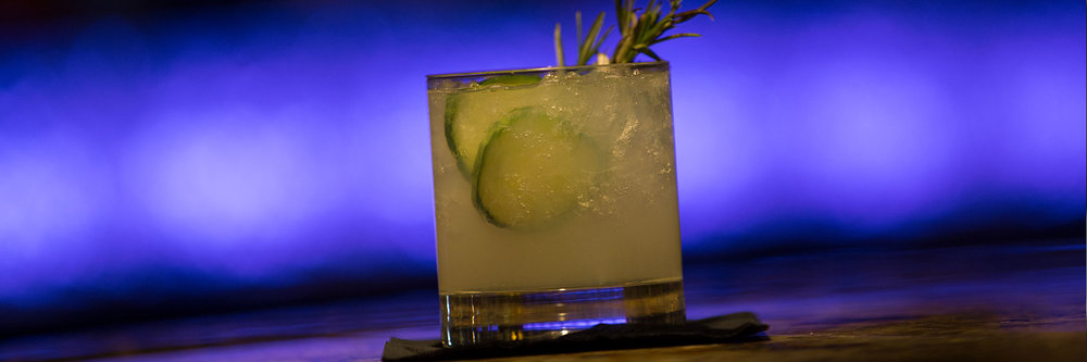 rosemary-cocktail-with-purple-background.jpg