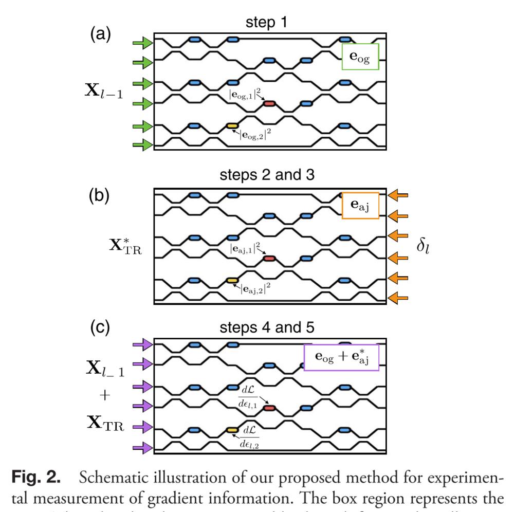 Figure 2 of Hughes et al., 2018