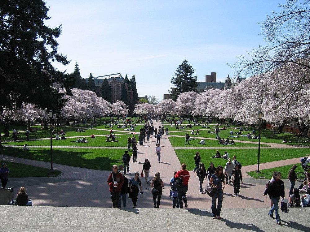 1024px-University_of_Washington_Quad,_Spring_2007.jpg