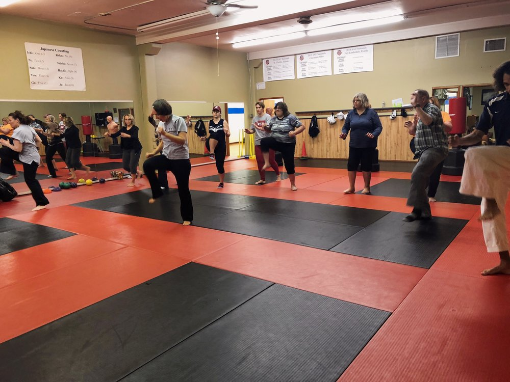 Teen and Adult Karate Program