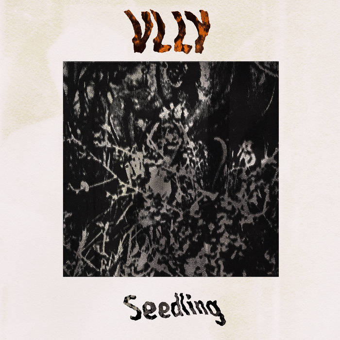 Seedling (EP Version) by VLLY