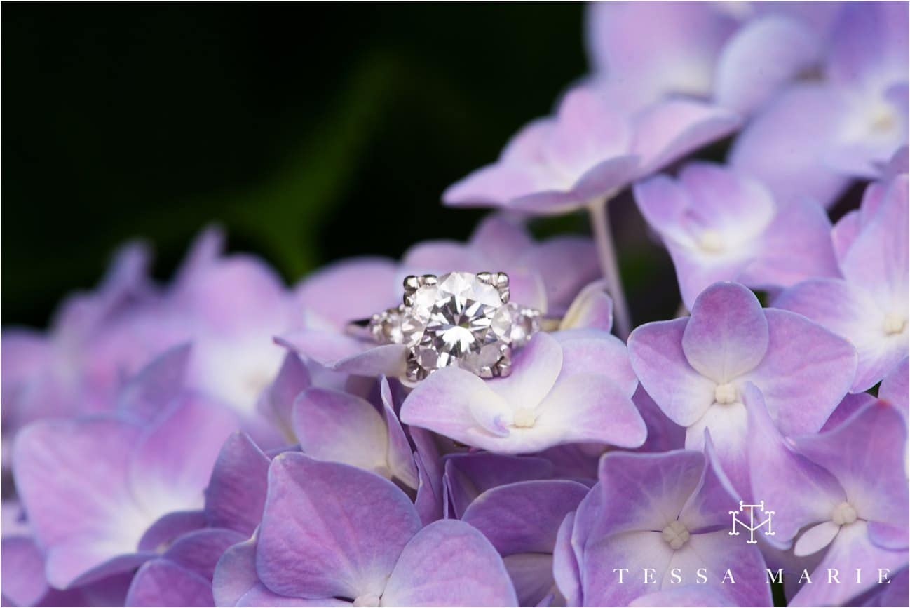 engagement_pictures_atlanta_wedding_photographer_tessa_marie_weddings_0105