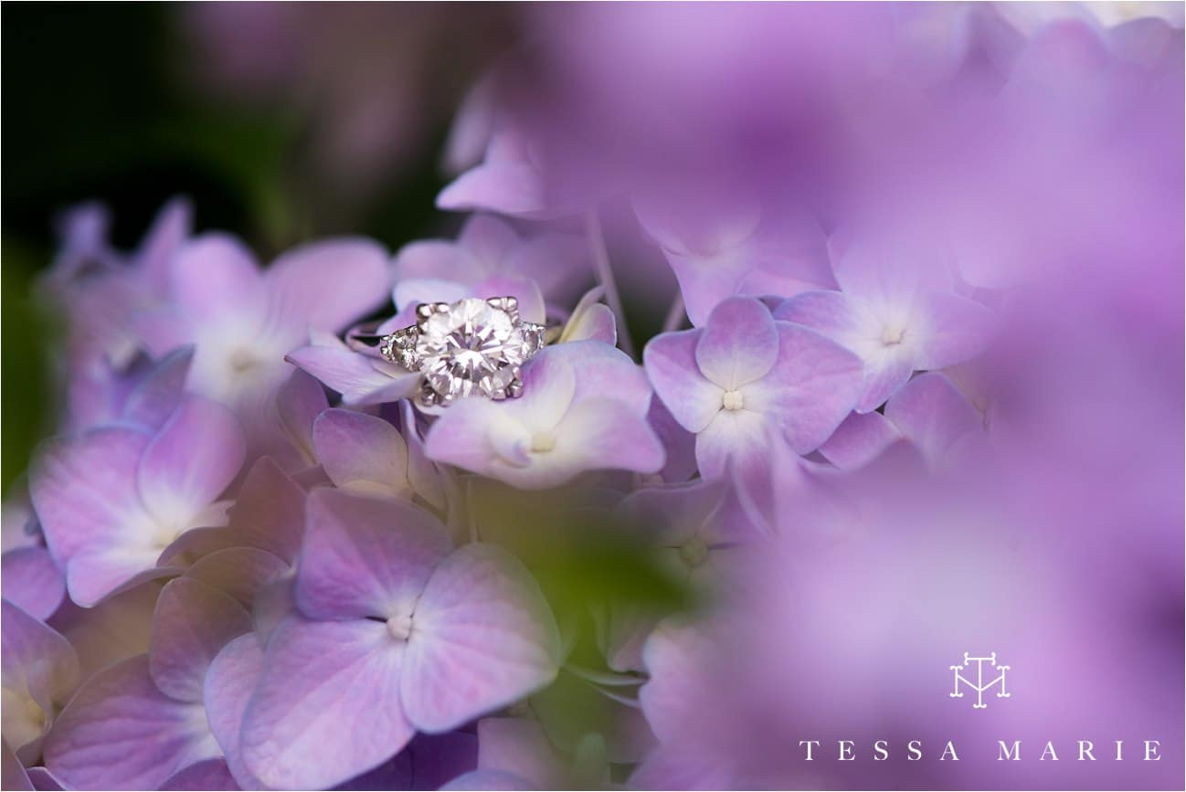 engagement_pictures_atlanta_wedding_photographer_tessa_marie_weddings_0107