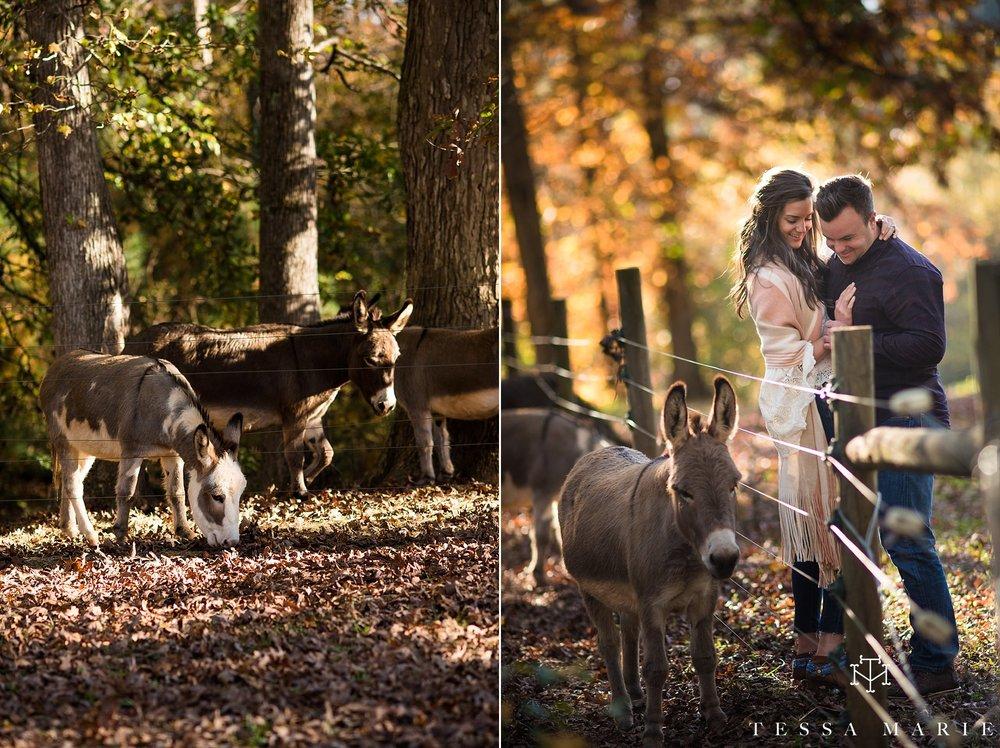 serenbe_engagement_pictures_serenbe_wedding_fall_engagement_pictures_tessa_marie_weddings_atlantas_best_wedding_photographer-_0002.jpg