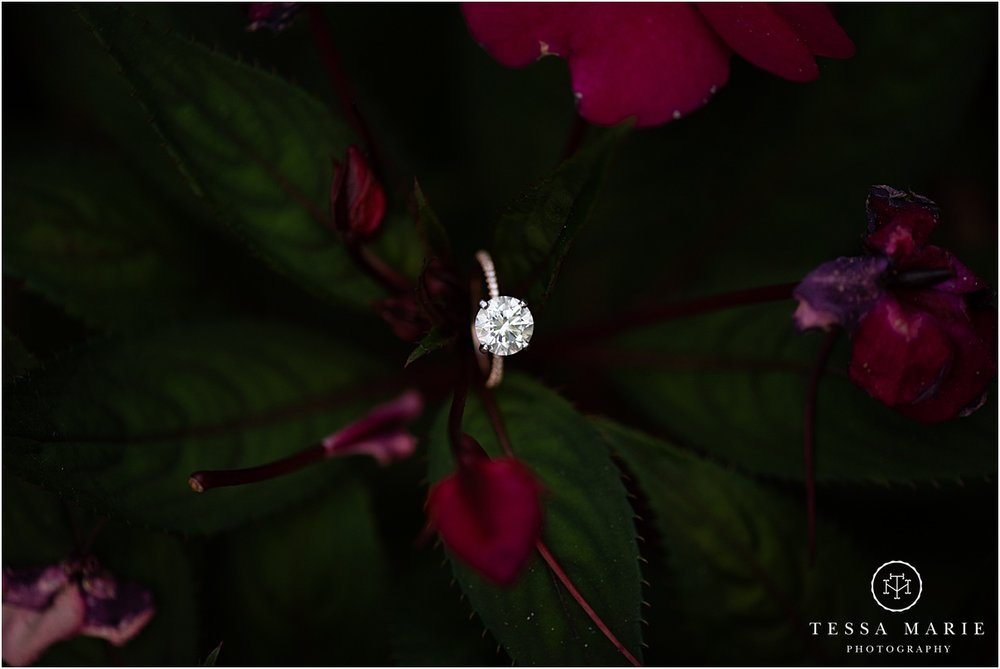 Tessa_marie_photography_wedding_photographer_engagement_pictures_piedmont_park_0021.jpg