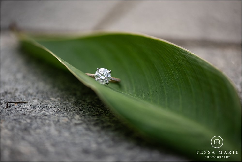 Tessa_marie_photography_wedding_photographer_engagement_pictures_piedmont_park_0022.jpg