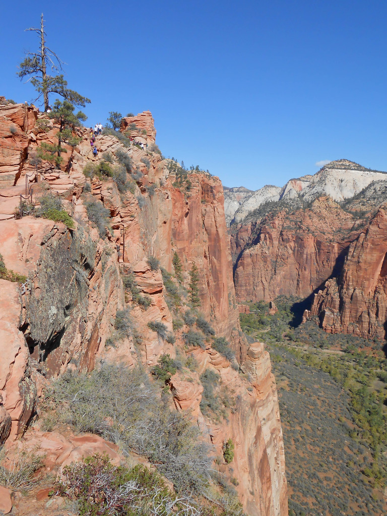 Angels Landing: What you need to know before embarking on this death-defying hike!