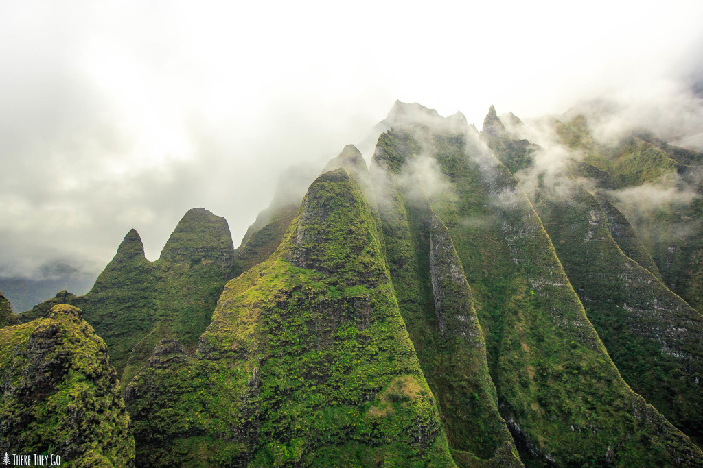 Planning a trip to Hawaii? Make sure to visit the island of Kauai! Click to find out why!