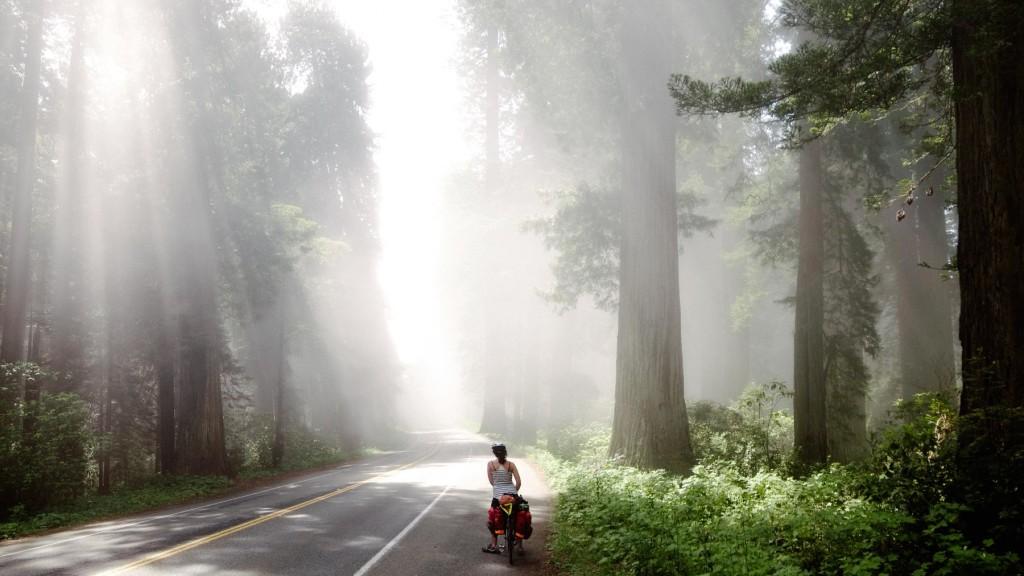 Biking Down The Coast: 1,800 Miles On Old Vintage 10 Speeds