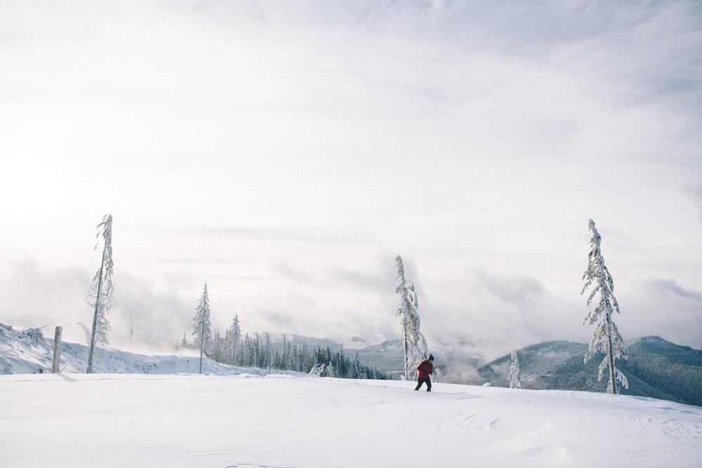 Mount Tahoma Trails: An Idyllic Winter Retreat