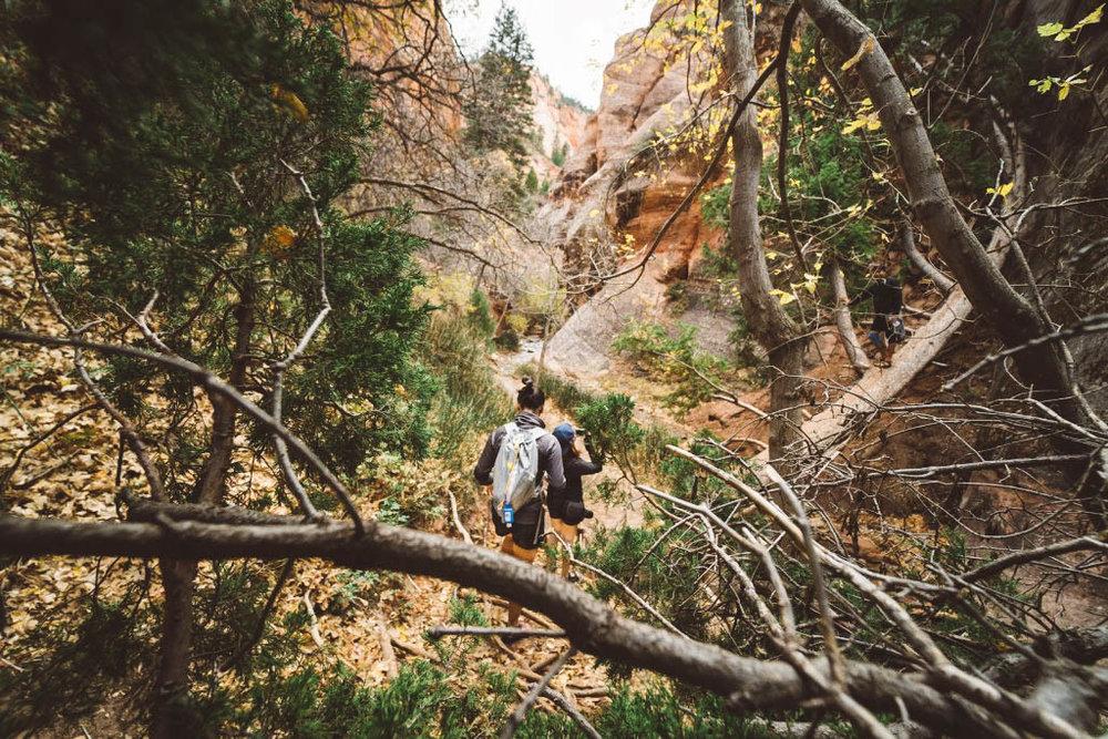 A Guide To: Hiking Kanarra Creek Trail