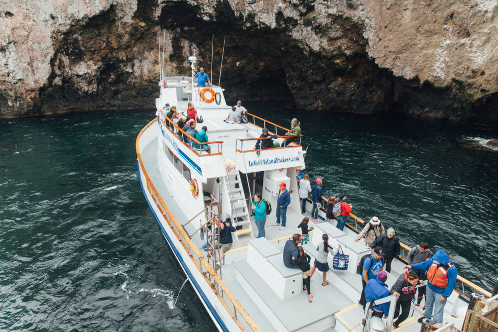 An Unforgettable Trip To Channel Islands National Park