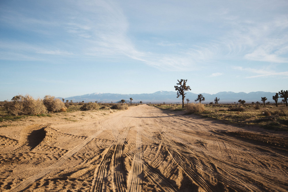 Colorado to California Road Trip: Mountains, Coast and Everything In-Between