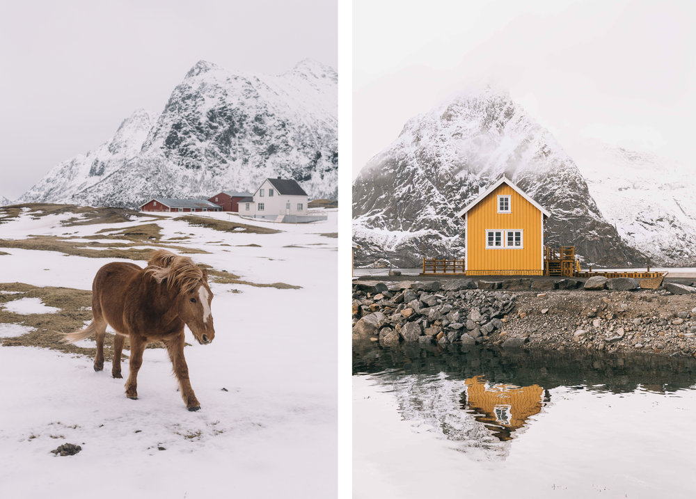 Lofoten: Discover Norway's Untamed Islands