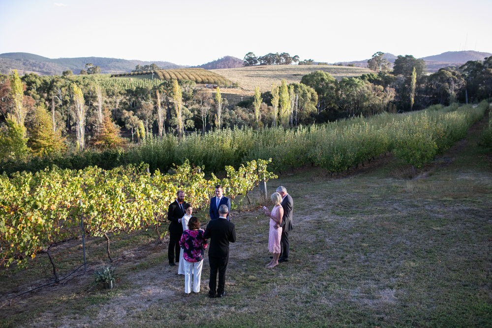 Wedding Borrodell Vineyard