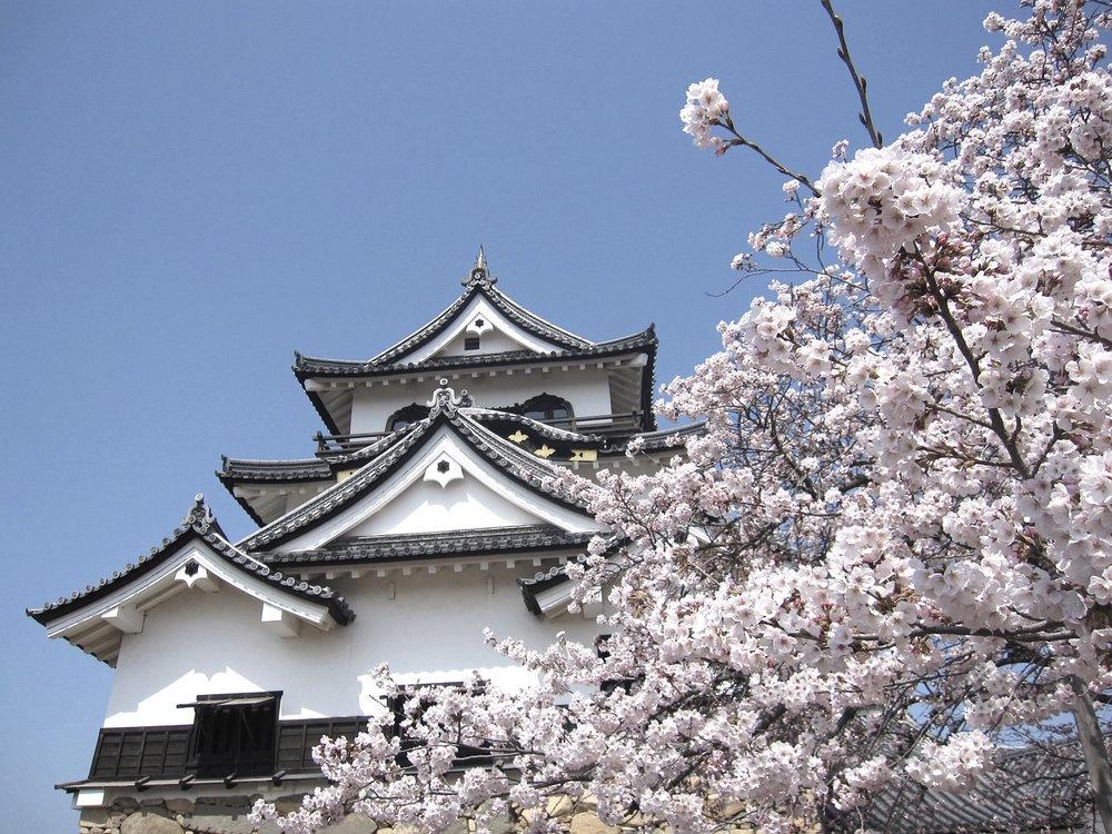 私は日本語を話したい。 - Watashi wa nihongo o hanashitai.