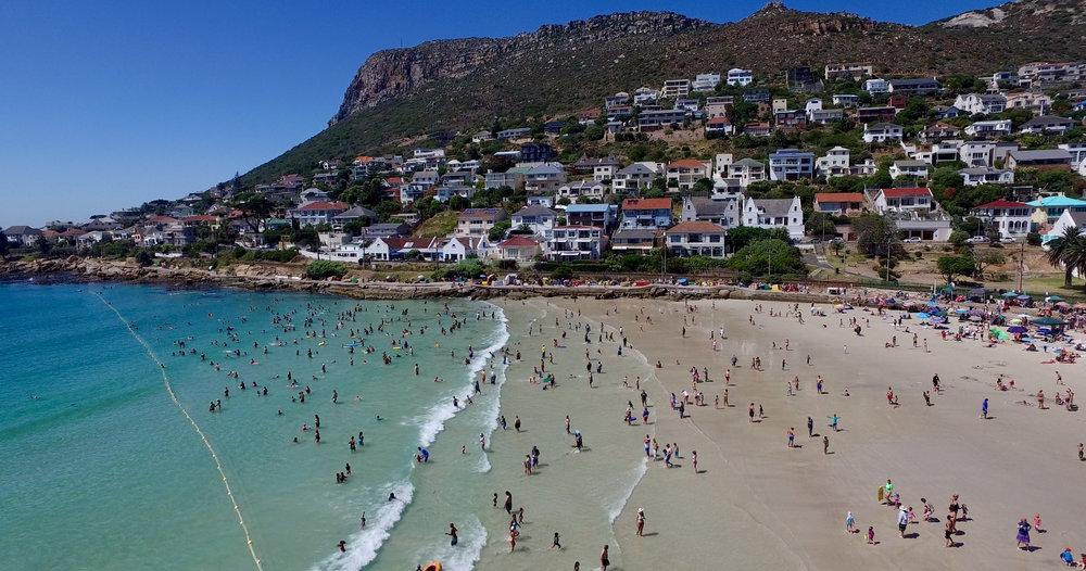 Shark Nets Cape Town Neighbourly