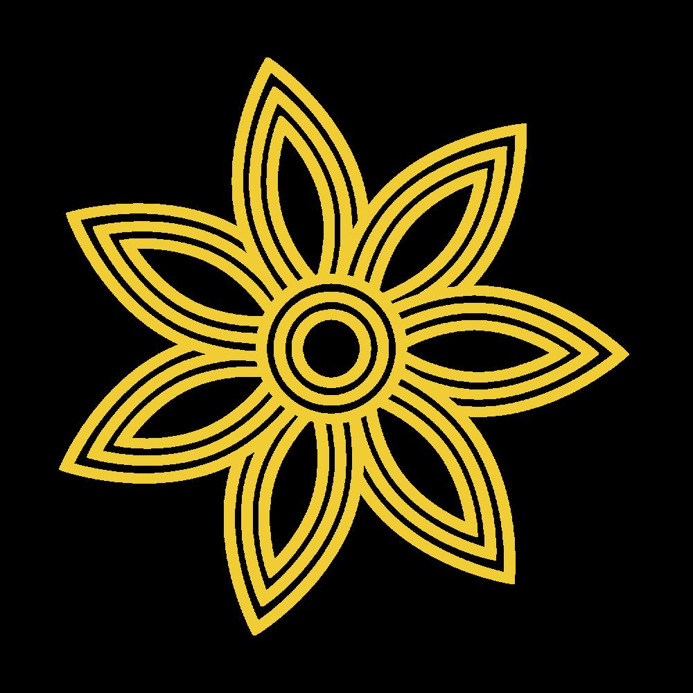 yellow logo HPR.png