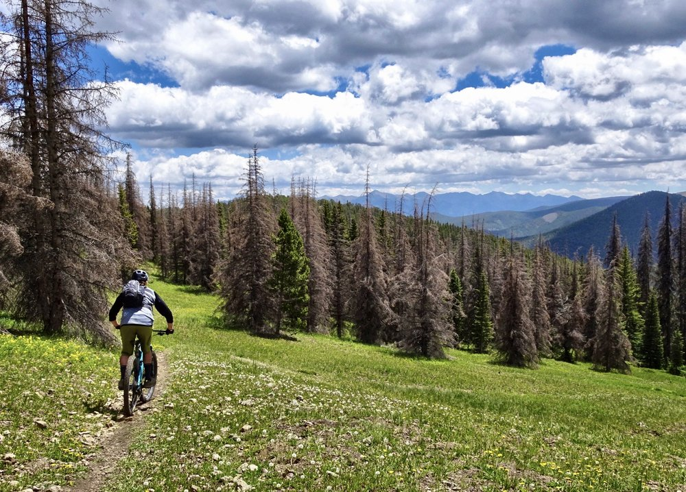 Descending off of the Monarch Crest on the Starvation Creek Trail. Rider: Nick Heil. Photo: Greg Heil