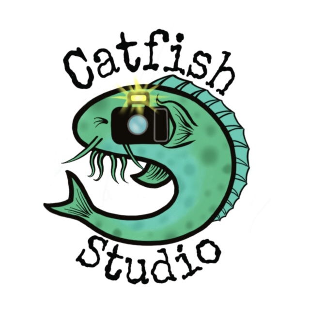 Catfish Studio