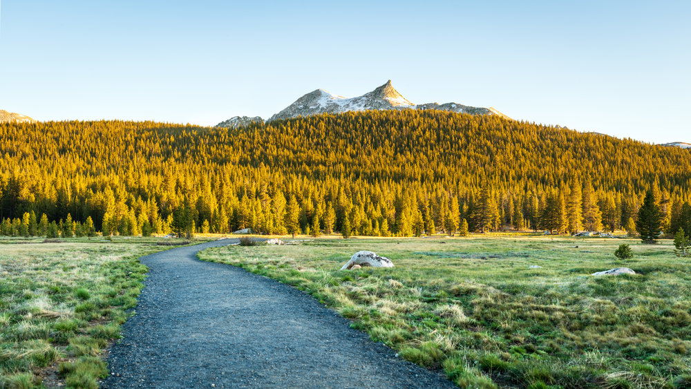 Cathedral Peak at Tuolumne Meadows